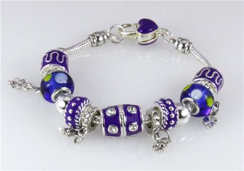 Charm Bracelets Pandora Style